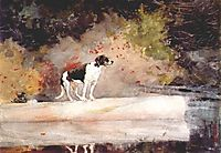 Dog on a log, 1889, homer