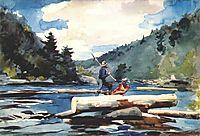 Hudson river, logging, 1897, homer