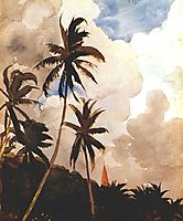 Palm trees (Bahamas), c.1888, homer
