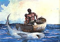 Shark Fishing, 1885, homer