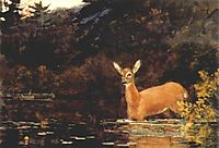 Solitude, 1889, homer