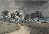 Storm, Bahamas, homer