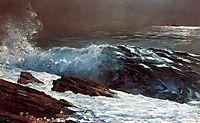 Sunlight on the Coast, 1890, homer
