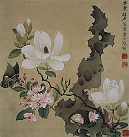 Magnolia and Erect Rock, hongshou
