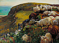 Our English Coasts, 1852, hunt