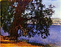 A Tree over Water in the Vicinity of Castel Gandolfo, c.1850, ivanov