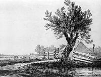 Landscape, jacobvanstrij