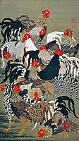 Roosters, jakuchu