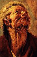 Study of the head of Abraham Grapheus, 1621, jordaens