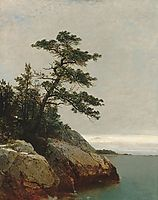 The Old Pine, Darien, Connecticut, 1872, kensett