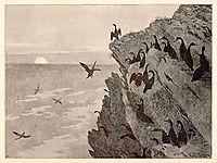Cormorant, 1891, kittelsen