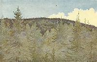 Der Floei En Fugl Over Granehei, 1900, kittelsen