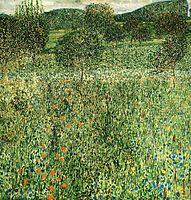 Flowering Field, 1909, klimt