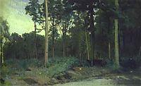 Bois de Boulogne near Paris, 1876, kramskoy