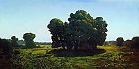 Oaks, c.1905, kuindzhi
