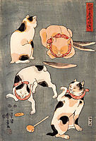 For cats in different poses, kuniyoshi