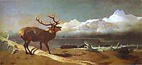 The Challenge, 1844, landseer