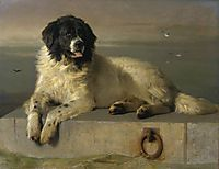 A Distinguished Member of the Humane Society, 1838, landseer