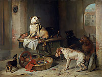Jack In Office, landseer
