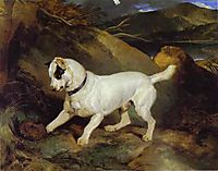 Jocko with a Hedgehog, 1828, landseer