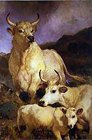 The Wild Cattle of Chillingham, landseer