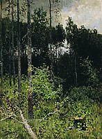 Aspen spinny. A gray day., 1884, levitan