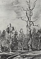 A dry tree by the road, c.1895, levitan