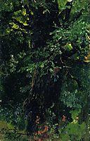 Oak trunk in early summer, levitan