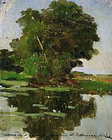 Overgrown pond, levitan