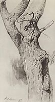 The trunk of an old tree, 1883, levitan