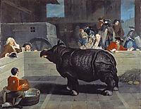 Rhinoceros in Venice, 1751, longhi