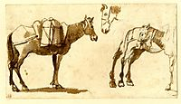 Drawing of mules, including one full length, lorrain