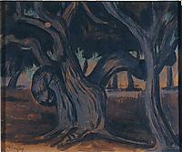 Olive trees, maleas