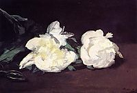 Branch of White Peonies and Secateurs, 1864, manet