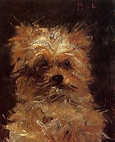 Head of a Dog, 1876, manet