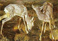 Deer at Dusk, 1909, marcfrantz