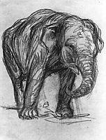 Elephant, marcfrantz