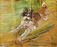 Jumping Dog Schlick , 1908, marcfrantz