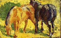 Small Horse Picture, marcfrantz