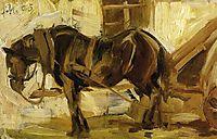 Small Horse Study, marcfrantz