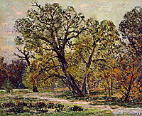 Autumn, 1909, maufra