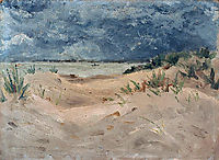 Waterloo de New-Brighton, maufra