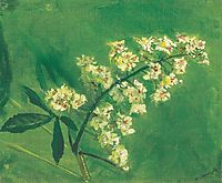 Chestnut Flower, mednyanszky