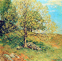 Budding Oak, 1906, metcalf