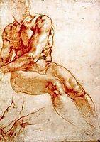 Male Nude Study, michelangelo