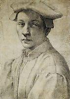 Portrait of Andrea Quaratesi, c.1532, michelangelo