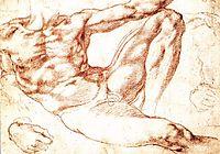 The Study of Adam, c.1508, michelangelo