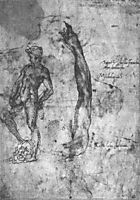 Study for an arm of the marble David and the figure of the bronze David, 1501-1503, michelangelo