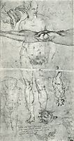 Various studies including a tracing from the other side of the sheet, 1500-1506, michelangelo