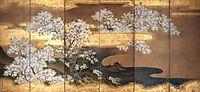 Cherry trees, mitsuoki